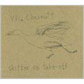 Vic Chesnutt/Skitter On Take - Off [2521680]