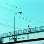 岩田光央/グライダー [LACA-5912]