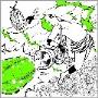 BULLET OF THUNDERBOLT<タワーレコード限定>