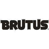 BRUTUS 2019年6月15日号