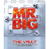 The VAULT 25周年記念オフィシャル・アーカイヴ・ボックス [20CD+2DVD+BOOK+GOODS]<限定盤>