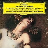 R.シュトラウス: 楽劇《サロメ》から(終曲のモノローグ、7つのヴェールの踊り)、5つの歌曲/ボーイト: 歌劇《メフィストーフェレ》より「天上のプロローグ」<タワーレコード限定>
