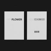Dry Flower: EP Album