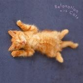 まるごと!猫 ~ネコ・リラックス