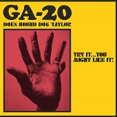 Does Hound Dog Taylor: Try It...You Might Like It!