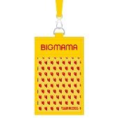 BIGMAMA × TOWER RECORDS チケットホルダー