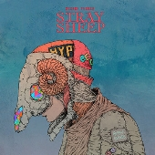 STRAY SHEEP [CD+Blu-ray Disc+アートブック]<アートブック盤(初回限定)>