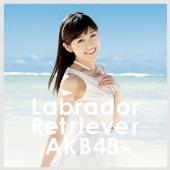 ラブラドール・レトリバー <Type-4> [CD+DVD]<通常盤>