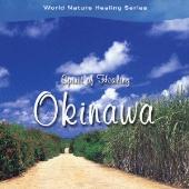 Spirit of Healing~Okinawa [DHS-503]