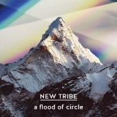 NEW TRIBE [CD+DVD]<初回限定盤>