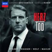HERZ-TOD/ブラームス、ワーグナー、ヴォルフ、マーラー: 歌曲集