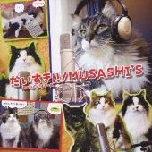 MUSASHI'S/だいすき!! [CD+DVD] [POCS-5021]