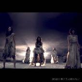 僕たちは戦わない<Type B> [CD+DVD]<通常盤>