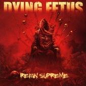 Dying Fetus/レイン・シュプリーム [YSCY-1241]