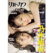 別冊カドカワ DirecT 13
