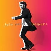 ブリッジズ (Deluxe)