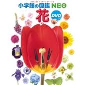 小学館の図鑑NEO 花 DVDつき