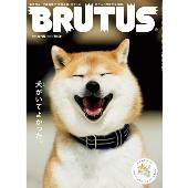 BRUTUS 2020年4月15日号