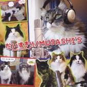 MUSASHI'S/だいすき!! [POCS-5022]