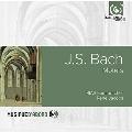 J.S.Bach: Motets