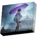 シノノメ BOX SET [2CD+DVD]<初回生産限定盤>