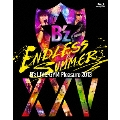 B'z LIVE-GYM Pleasure 2013 ENDLESS SUMMER -XXV BEST- 【完全版】