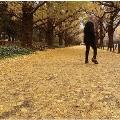 或る秋の日 [CD+ブックレット]<受注生産限定盤> CD