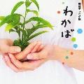 NHK連続テレビ小説 わかば オリジナル・サウンドトラック~泣いたりしないで~