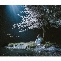 春はゆく/marie [CD+DVD]<初回生産限定盤>