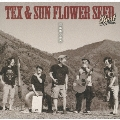 TEX & SUN FLOWER SEED BEST 「100年後の世界」
