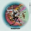 Imaginary [CD+DVD]<初回限定盤A>