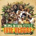 BURN DOWN STYLE IRIE REGGAE Dub Plate Edition 2