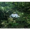 slumbers (Deluxe Edition) [CD+オマケ]<生産限定盤>