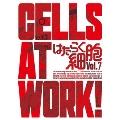 はたらく細胞 Vol.7 [DVD+CD]<完全生産限定版>
