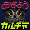 おはようカルチャー [CD+DVD]<初回限定盤>