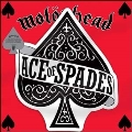 Ace of Spades<BLACK FRIDAY対象商品>