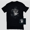 ダモジェン・フューリーズ [CD+Tシャツ[Mサイズ]]<完全限定生産盤>
