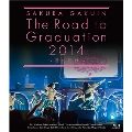 The Road to Graduation 2014 ~君に届け~