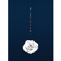 Rose: 6th Single (B Ver.) (全メンバーサイン入りCD)<限定盤>