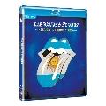 ブリッジズ・トゥ・ブエノスアイレス<通常盤> Blu-ray Disc