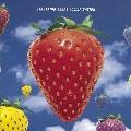Jollification [LP+7inch]<Red Vinyl/完全生産限定盤>