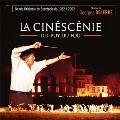 La Cinescenie Du Puy Du Fou (1982-2002)