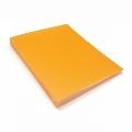 タワレコ 推し色グッズ チェキファイル/Orange