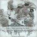 Like a light piercing the dark<限定生産盤>