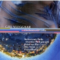 G.Vleggaar: Orchestral Works