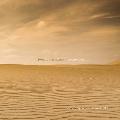 ジョン・ルーサー・アダムズ: Become Desert [CD+DVD]