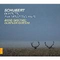 Schubert: String Quintet Op.163 D.956