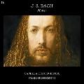 J.S.バッハ: 七つのモテット BWV.225-BWV.230, BWV.Anh.159