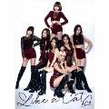 Like a Cat [CD+フォトブック]<初回限定盤TypeB>