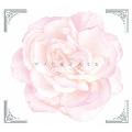 マリア様がみてる Complete Blu-ray BOX [11Blu-ray Disc+5CD]<初回限定生産版>